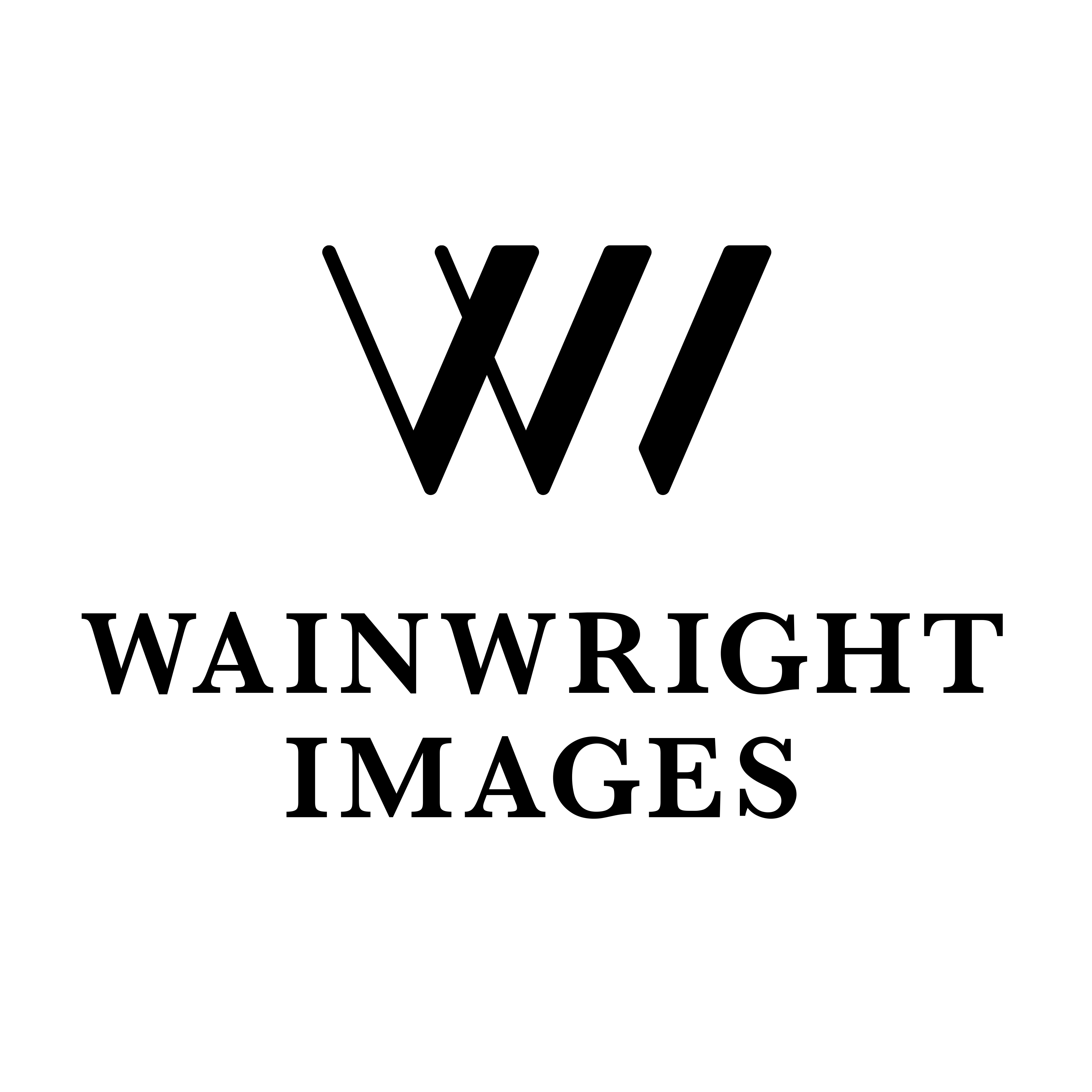 Wainwright Photography